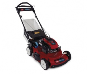 Toro 20955 Petrol Lawnmower