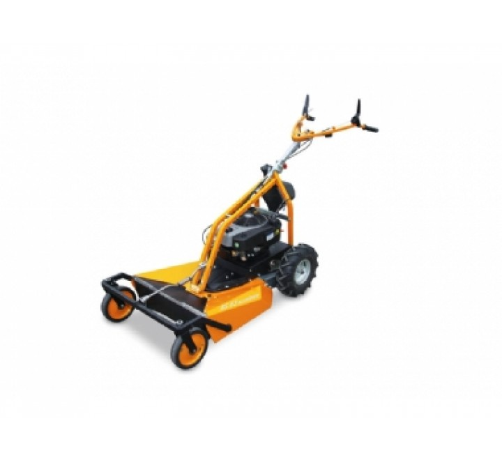 AS Motor AS63 4T B&S Brushcutter